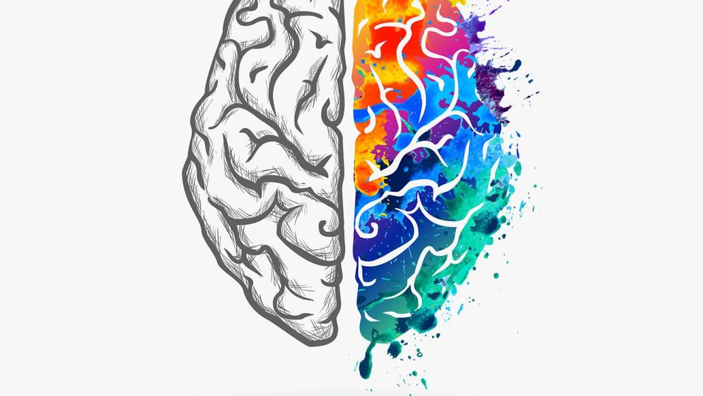 Avances neurocientíficos de los últimos años